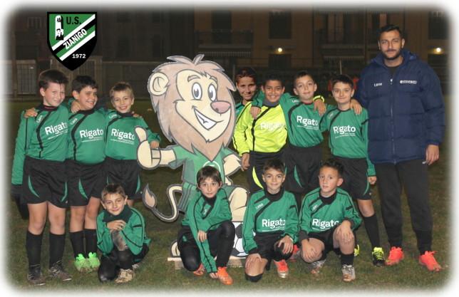 Pulcini2006